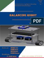 Projet Self Balancing Robot