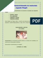 Etapas Do Desenvolvimento Do Raciocínio Segundo Piaget