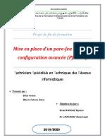 Raport de Projet