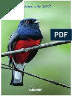 Aves de São Francisco Xavier (Distrito de São José Dos Campos - SP) - 2019
