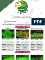 PLANTATUM Plantas Por Encomenda PPT-convertido