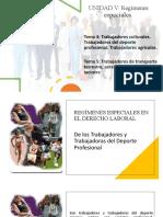 UNIDAD V. REGÍMENES ESPECIALES EN EL DERECHO LABORAL. TEMAS 4 y 5.