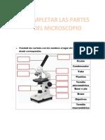 LAS PARTES DEL MICROSCOPIO 1