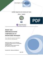 Audit Des IC Et Inv Phy