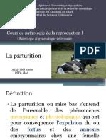 Cours de pathologie de la reproduction I parturition