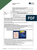 Protocolo Equilibrio hidroelectrolítico