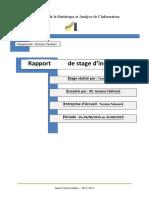 Rapport_de_stage_dinsertion_professionne_(1)