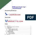 USO DE ASMCMD11gr1
