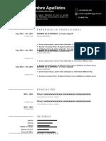 166-modelo-curriculum-online-gratis-word-doc-97-2003
