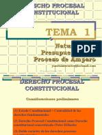 AMPARO_Naturaleza_y_objeto
