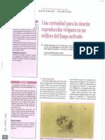 2004 - Una curiosidad par la ciencia. reproducción vivípara en un rotífero del fango activo