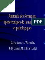 3- 7 Anatomie Fascia Main (Pr Fontaine)