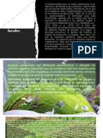 Conceptos Generales, Diseños Locales