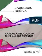 2A - fisiologia da pele e anexos cutâneos-2