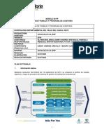 Modelo 05 Plan trabajo_programa_auditoria