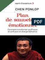 Plan de sauvetage émotionnel - Dzogchen Ponlop Rinpoché