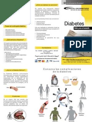 diabetes mellitus tipo 2 tripticos