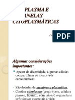 CITOPLASMA E ORGANELAS CITOPLASMÁTICAS- SLIDES