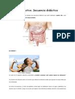 secuencia Sistema digestivo