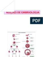 AULA 12 Embriologia