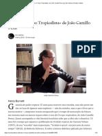 Sobre «O Tropo Tropicalista» de João Camillo Pena _ by Ed Caliban _ Revista Caliban