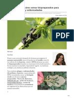 infocampo.com.ar-Botiquín verde cómo armar biopreparados para combatir plagas y enfermedades