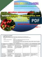 RESUMEN 1. RECURSO AGROINDUSTRIAL CAFÉ I. 2021 I. DR. WALTER PANDURO CALDERÓN.. (1)