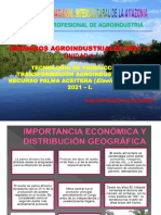 RESUMEN 3. TECNOLOGÍA PRODUCCIÓN E INDUSTRIALIZACIÓN PALMA ACEITERA. 2021-I. 6 JUL 2021.