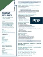 CV Romaine MELLINGER - DATA MARKETING