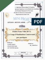 Mini Projet 20101