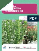 inta_-_guia_tecnica_para_el_cultivo_de_moluccella-web