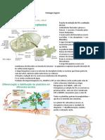 Biologia vegetal