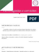 Vulvovaginites e cervicites - Anna Luiza Castro