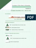 News51 Secagem Madeira Biomassa