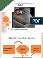 1.CIUR-Crescimento intrauterino restrito (slides)