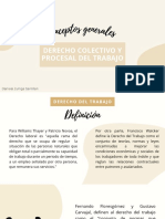 Conceptos generales de Derecho Colectivo y procesal del trabajo