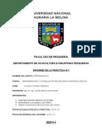 Refrigerados_Informe1..jk