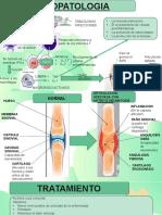 Fisiopato y Tratamiento Artritis
