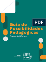 3 Guia de Possibilidades PDF