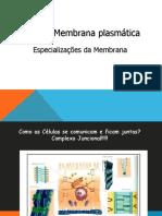 aula4_membranaplasmatica3