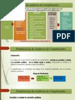 Semana 5 Proceso de Auditoria y Planificacion de Auditoria
