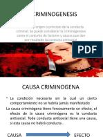 LA CRIMINOGENESIS
