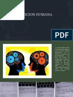cognicion humana 1