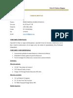 CV PEDRO MARCEL