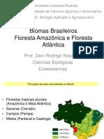 Ecossistemas - Aula 11 - Florestas Tropicais no Brasil