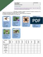 Chap1 Act7 - Regrouper des espèces selon leurs parentés