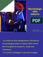 Filosofia-neurosci5Mem