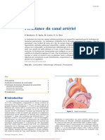 Canal arteriel