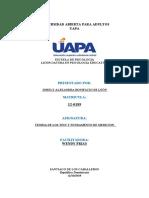 433288624 Tarea IV Teoria de Los Test y Fundamento de Medicion Docx