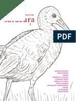 Revista Saracura volume 01pp